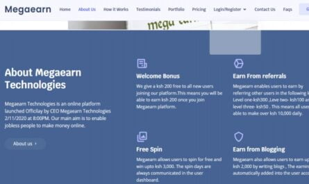 Megaearn Technologies Limited Guide, Registration, Login, Review, and Contacts